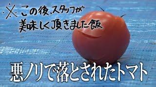 チョコレートプラネット 「※この後、スタッフが美味しく頂きました。②~トマト~」