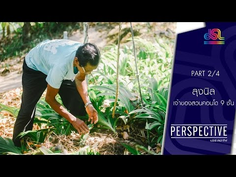 Perspective : ลุงนิล | เจ้าของสวนคอนโด 9 ชั้น [12 มิ.ย. 59] (2/4) Full HD