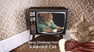 Keyboard Cat LOVES CHRISTMAS!