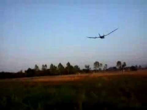ฺิBAT FLYING (ค้างคาวบิน)