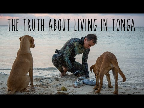 The truth about living in Tonga (Underwater Ally Adventures) Ep.13