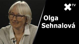 """""""Pokud by Babiš zametal nějaké věci pod koberec, ČSSD z vlády odejde."""" – říká Olga Sehnalová"""