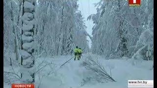 видео Снегопад в США оставил без электричества сотни тысяч домов