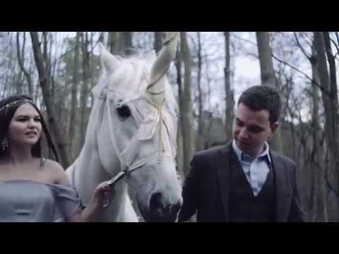 Дрессированные лошади Яны Шаниковой для фото и видео сессий!