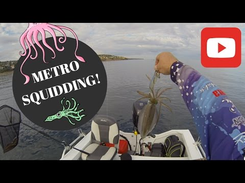 Squidding Adelaide Metro VLOG~The Fresh Salt