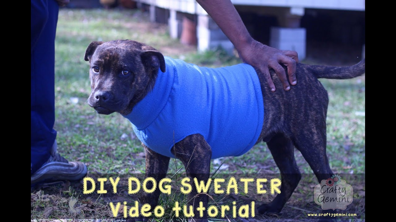 How To Make A Dog Sweater Diy Tutorial