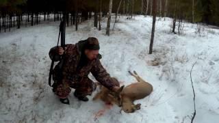Зимняя охота на косулю в Сибири