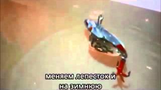 Цикада-мотылек.зима-лето