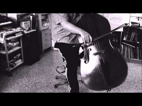 "VITO LIUZZI ""Joking with a Doublebass"" - New Bowings and Pizzicatos Technique - The Relax tecnique"