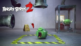 Angry Birds 2 – Test Piggies: The Chili