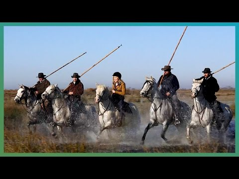 Maddie Chases Bulls With The Gardian Of The Camargue | Earth Unplugged