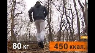 видео Сколько калорий сжигается при беге? Бег для похудения