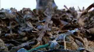 BBC  Силы природы  Серия 2  Ливни и наводнения