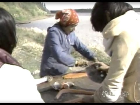 Living on the Land in Alaska: Two Stories (1983)
