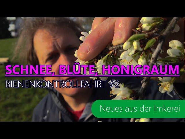 BKF #2- 2021 - Wie sieht es es nach der Kälte bei der Blüte /den Bienen aus? | Neues aus der Imkerei