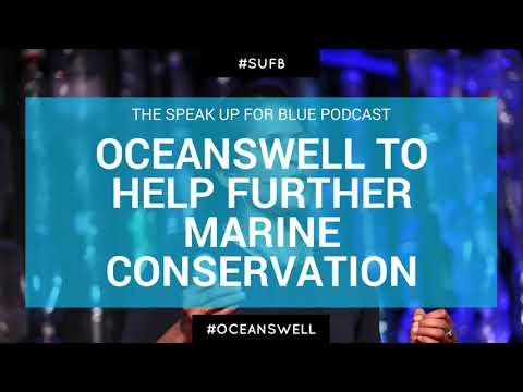 Blue Whale Conservation via Oceanswell with Dr. Asha de Vos