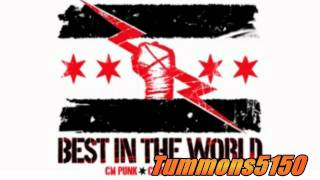 "WWE CM Punk New Theme Song 2011 R.O.H ""Cult of Personality"" + Download Link"