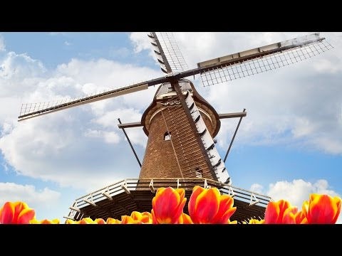 Tulips And Windmills Itinerary From Viking River Cruises