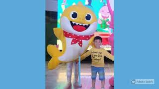 Mascot Costume Rentals Adult Sizes | Rent Adult Sized Mascot Costumes Sesame Street Elmo Minions