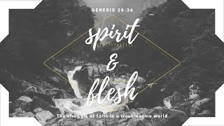 Dreams and Plans   Genesis 31