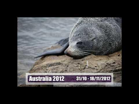 Eclisse sole Australia 2012 Toa