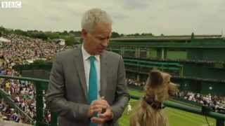 Hacker the Dog squares up to John McEnroe