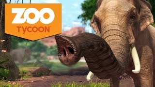 Thumbnail für das Zoo Tycoon - Xbox One Let's Play