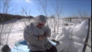 Охота на гусей 2015 Нарьян-Мар