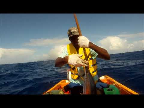 Fishing Vieux Fort St Lucia 15 Dec 2017