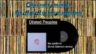 Dilated Peoples - the platform (Erick Sermon remix) (2000)