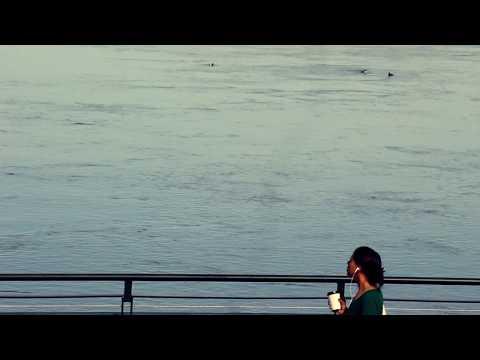 """Three"" - Sleeping At Last (Micro Music Video)"
