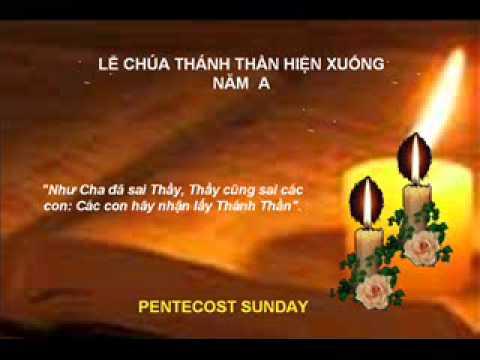 CN Le Chua Ba Ngoi nam A_19.6.2011_ Lm.Le Quang Uy_DCCT_Le Xa Que