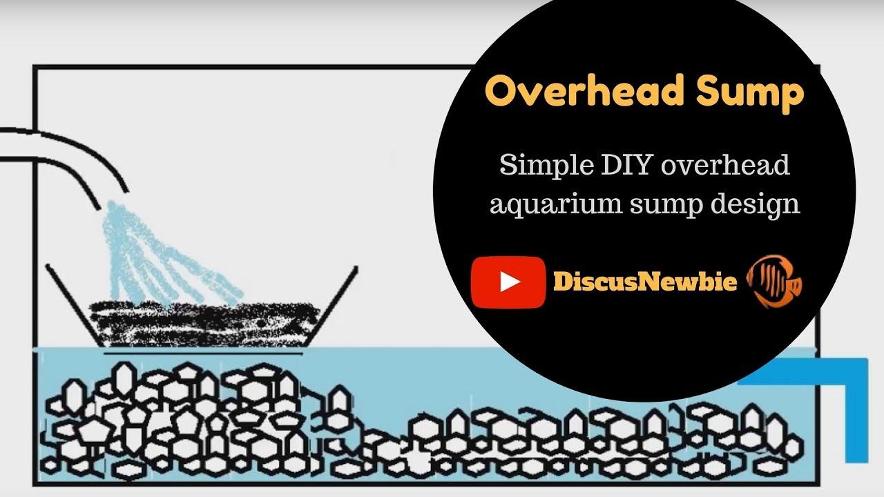 Diy Aquarium Filter Overhead Sump Youtube