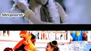 Shapoo Vs Poorav Who Is Best