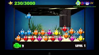 Android  Tap the Fish - Pocket Aquarium