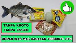 Kumpulan Resep Umpan Ikan Mas Kilo Gebrus Tanpa Essen Tutorial Bisnis Kreasi Botol Bekas