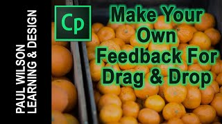 Adobe Captivate - Make Your Own Feedback for Drag & Drop