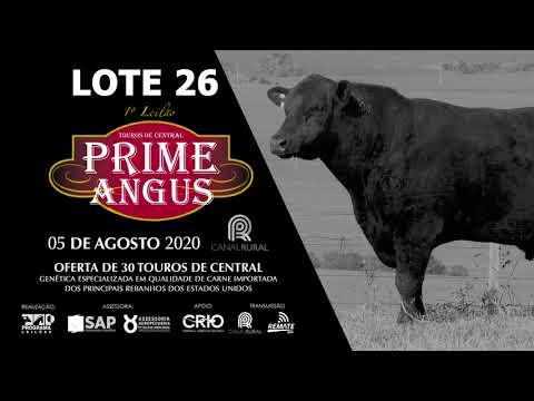 LOTE 26   BLACK OPAL TEI928 T BONE Prod  Agência El Campo