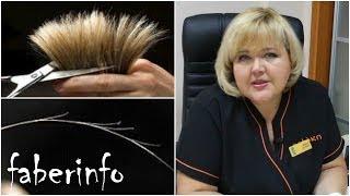 ТРИХОЛОГ о сухой коже головы и ПОСЕЧЕННЫХ волосах(, 2014-02-18T14:27:29.000Z)