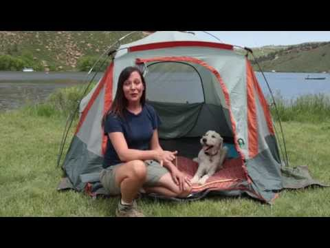 Expert Tips for Camping With Your Dog