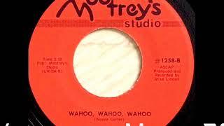 Jazz Funk - Wayne Carter - Wahoo