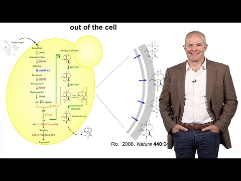 Synthetic Biology:  Engineering Microbes to Solve Global Challenges - Jay Keasling