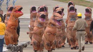 Herd of T. Rex Stampede Through Nashville thumbnail