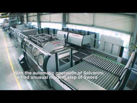 Hangzhou Sword Elevator China Overview