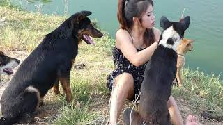 Amazing Smart dogs playing with Lady at Garden   how to play with cute dogs and lady #15