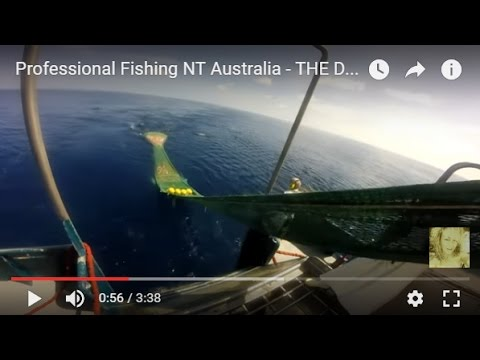 Professional Fishing NT Australia - THE DUCKPOND