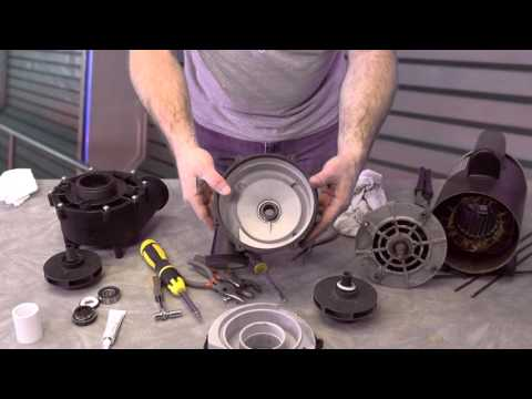 LX Series Guangdong Pump How To Repair  The Spa Guy