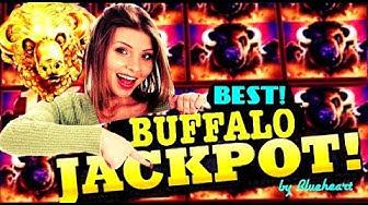 ★ DREAM COME TRUE ★ 100+ SPINS! BUFFALO GOLD slot machine MASSIVE JACKPOT