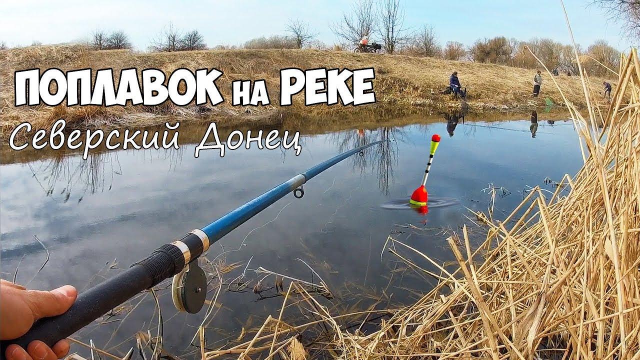 Летняя рыбалка в камышах на поплавочную удочку видео