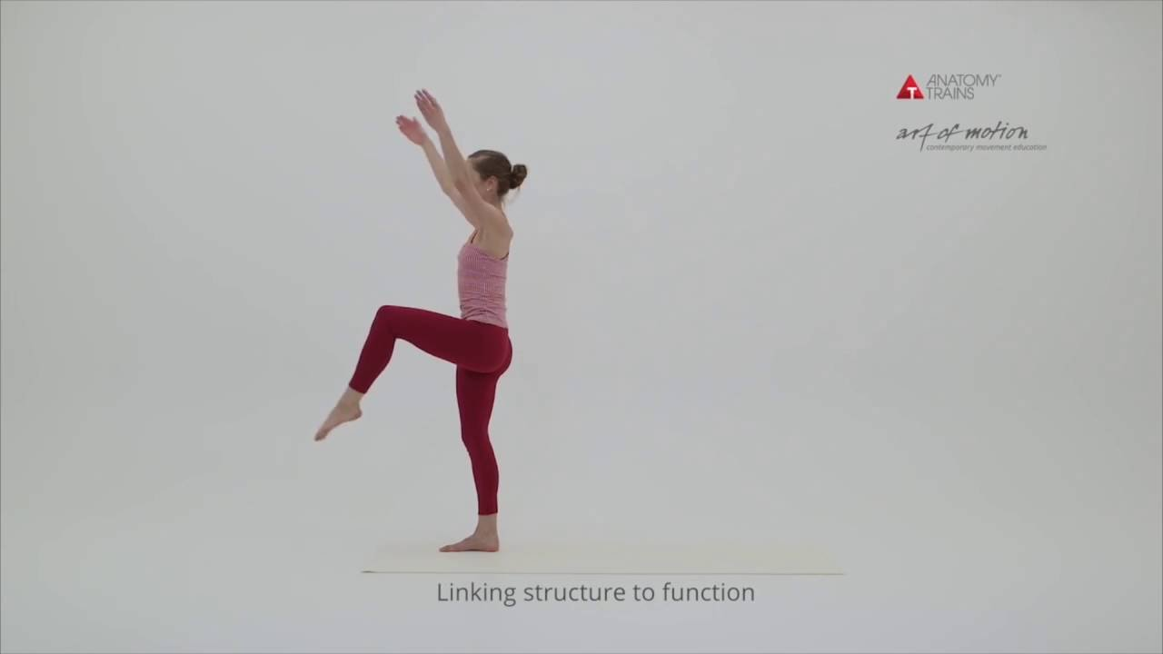 Anatomy Trains in Motion – Dublin, June 2018 - YouTube